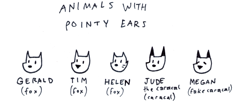 Animals with Pointy Ears